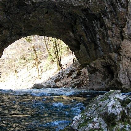 Škocjan Caves Regional Park