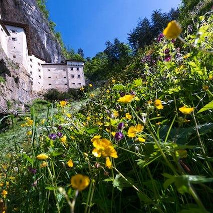 Predjamski grad Castle-Castello-Burg