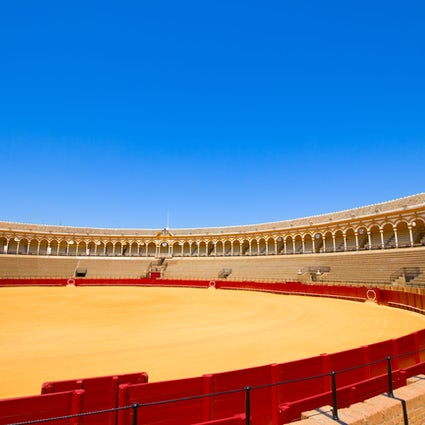 Watch a Corrida in Plaza de Toros, Sevilla