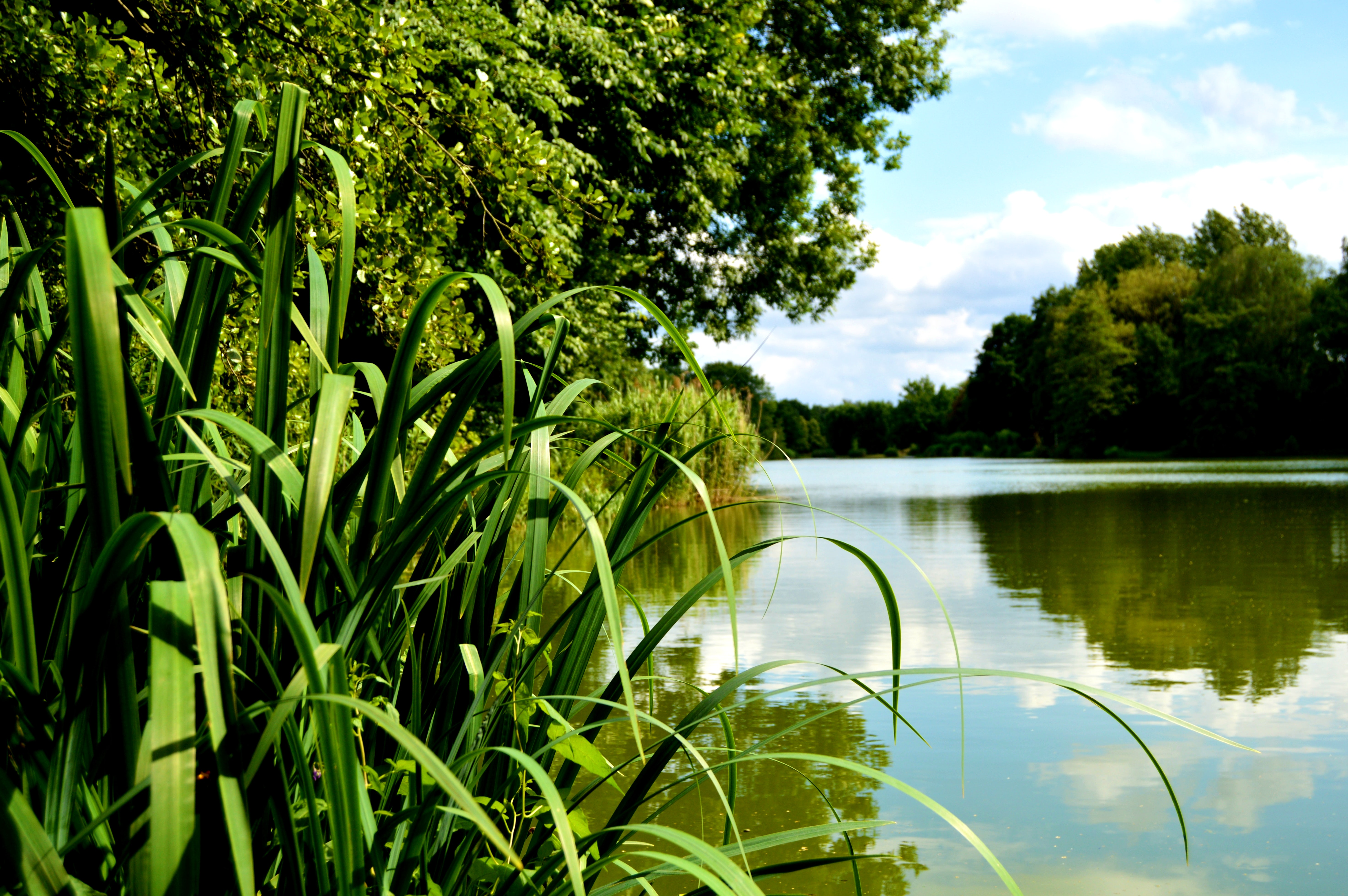 Lac des vieilles Forges