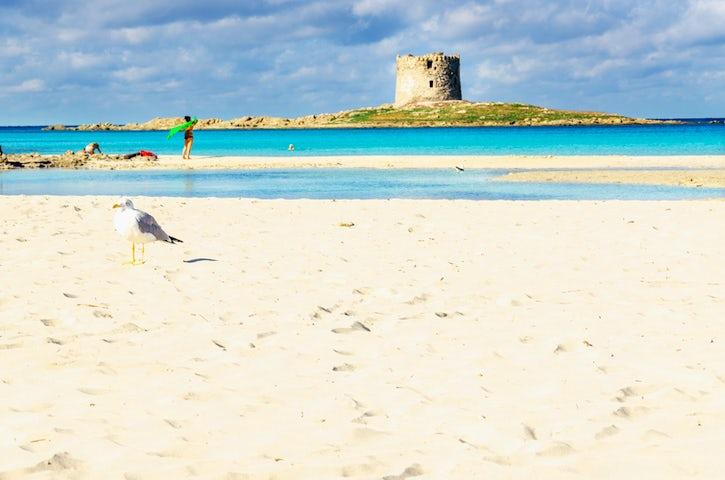 Spiaggia della Pelosa a Stintino