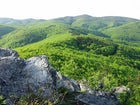 Papuk Mountain