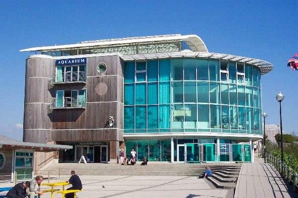 Travel Inspired Location National Marine Aquarium In Plymouth Largest One The Uk
