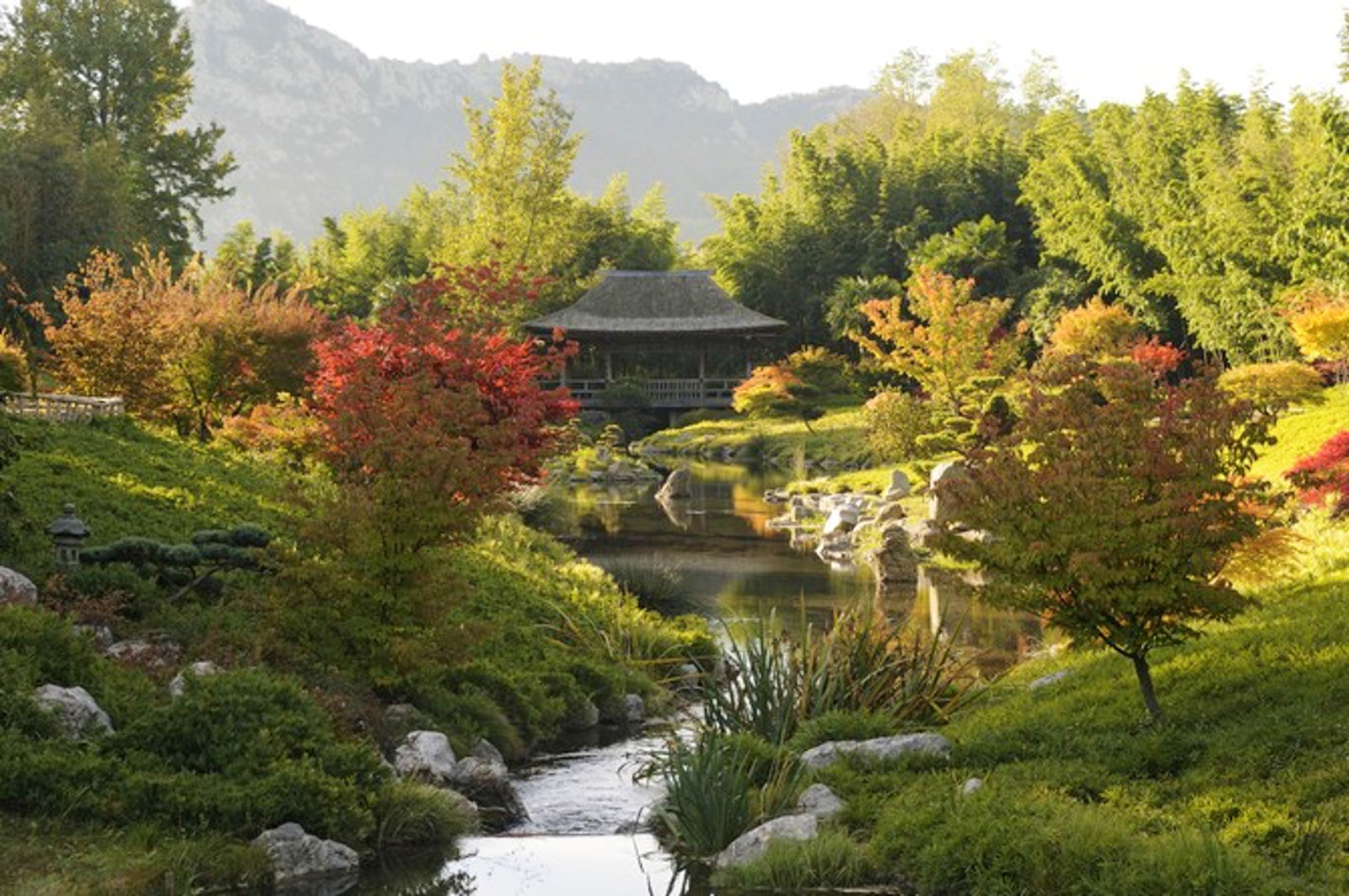 Travel inspired location jardin exotique prafrance bambouseraie d 39 anduze itinari - La bambouseraie a anduze ...