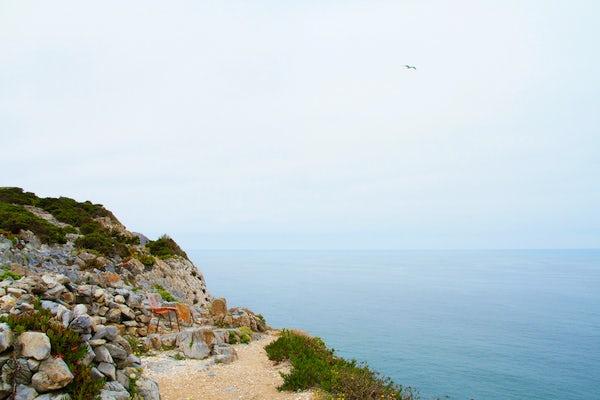 Peaceful cliff trails around Praia da Adraga