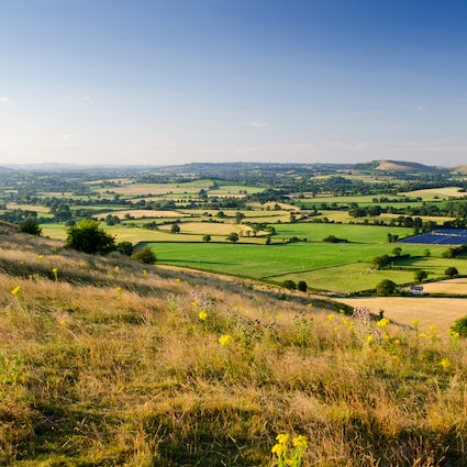 Summer walking routes in Dorset part 1