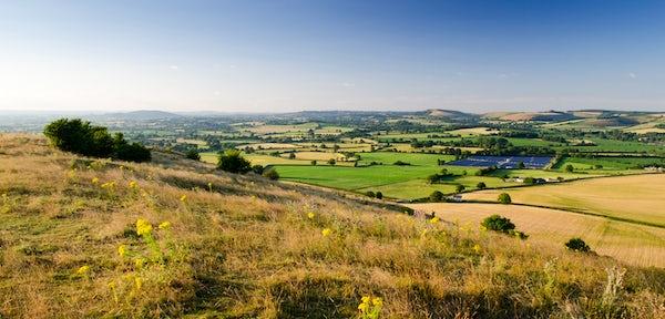Summer walking routes in Dorset part 1