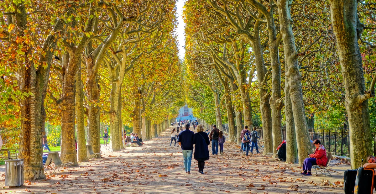 A day out with kids in Paris