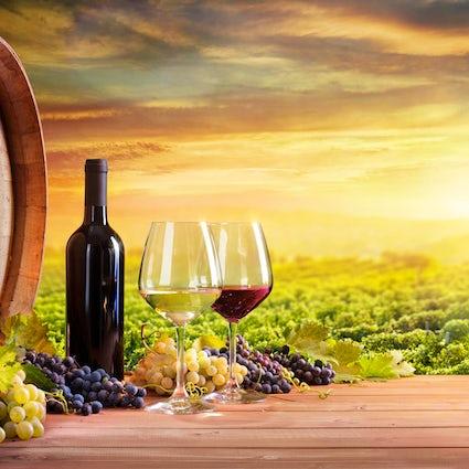 Travelers dream destination - Milestii Mici Winery in Moldova