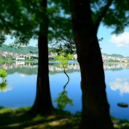 An escape into nature-Tirana's artificial lake