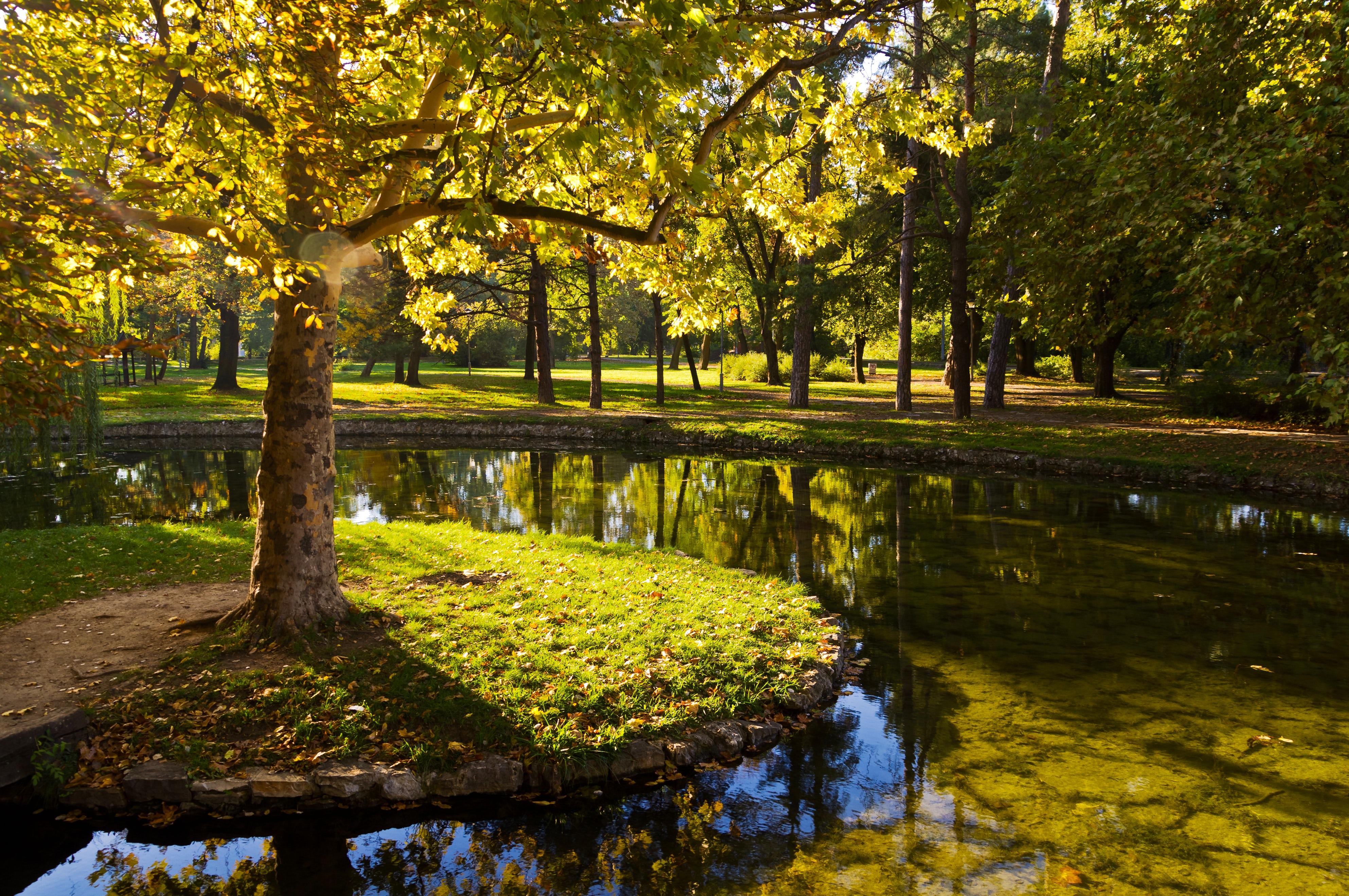 Belgrade Greenery: Park Topcider
