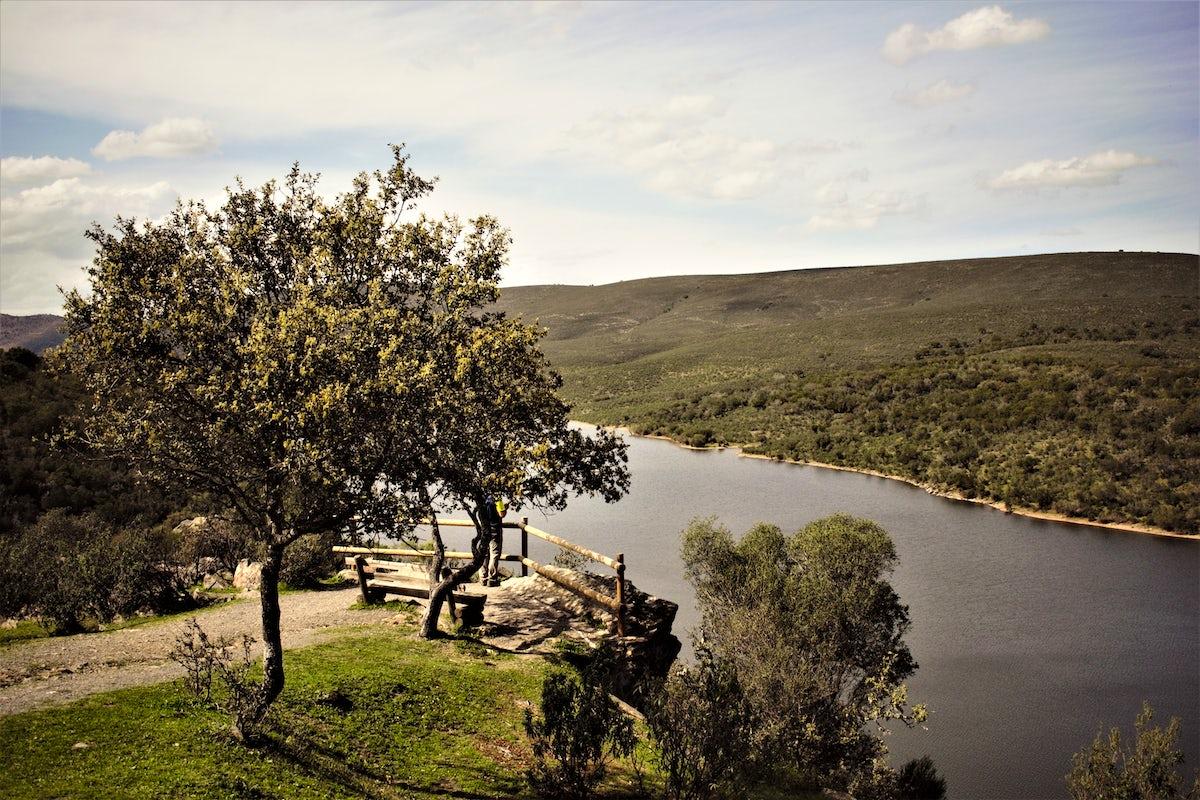 Soaring Eagles - Monfrague National Park