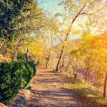 Mushthaid Garden – a recreation center of Tbilisi