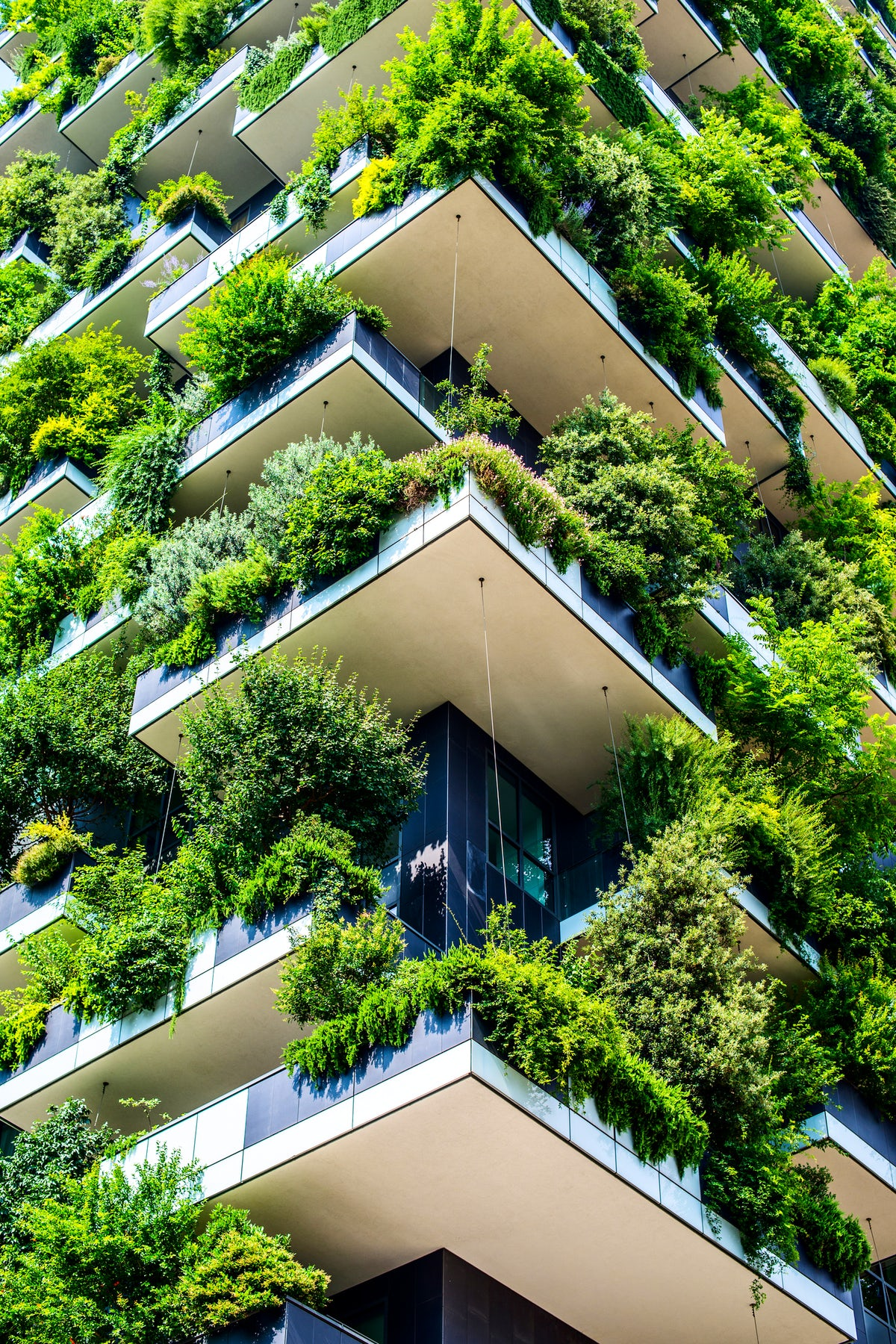 The Vertical Forest, Innovative Architecture in Milan