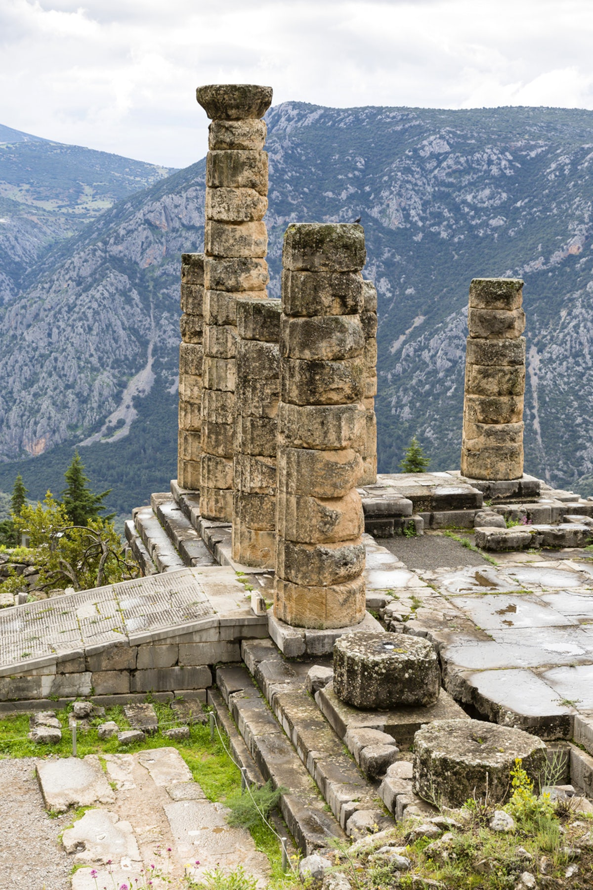 The Delphi Experience