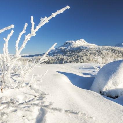 Riksgränsen - the ski regime