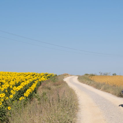 Walking in the countryside of Valencia part 2