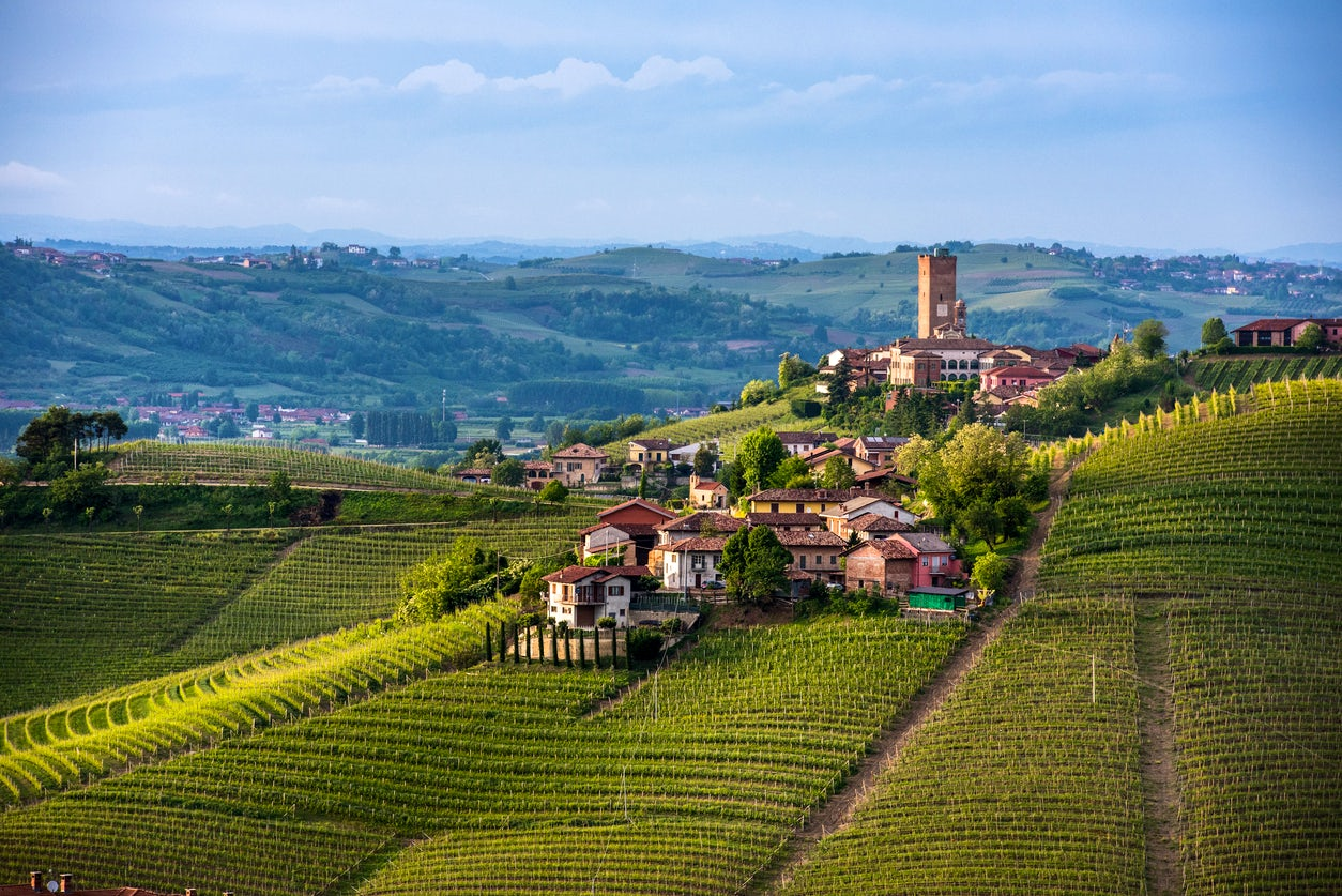 """Cantine Aperte"", taste wine and visit vineyards in Italy"