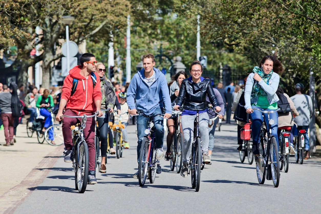Vrije University of Amsterdam; A short guide to the student life.