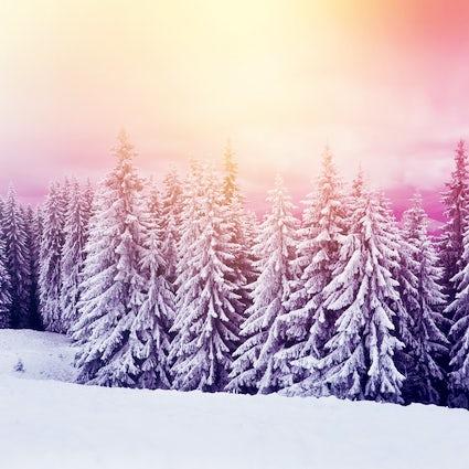Nature wonderland at Kopaonik mountain