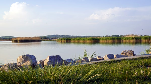 Fall in love with Hungary at Lake Velence