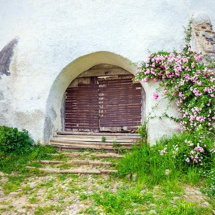 The beauty of the village Viscri