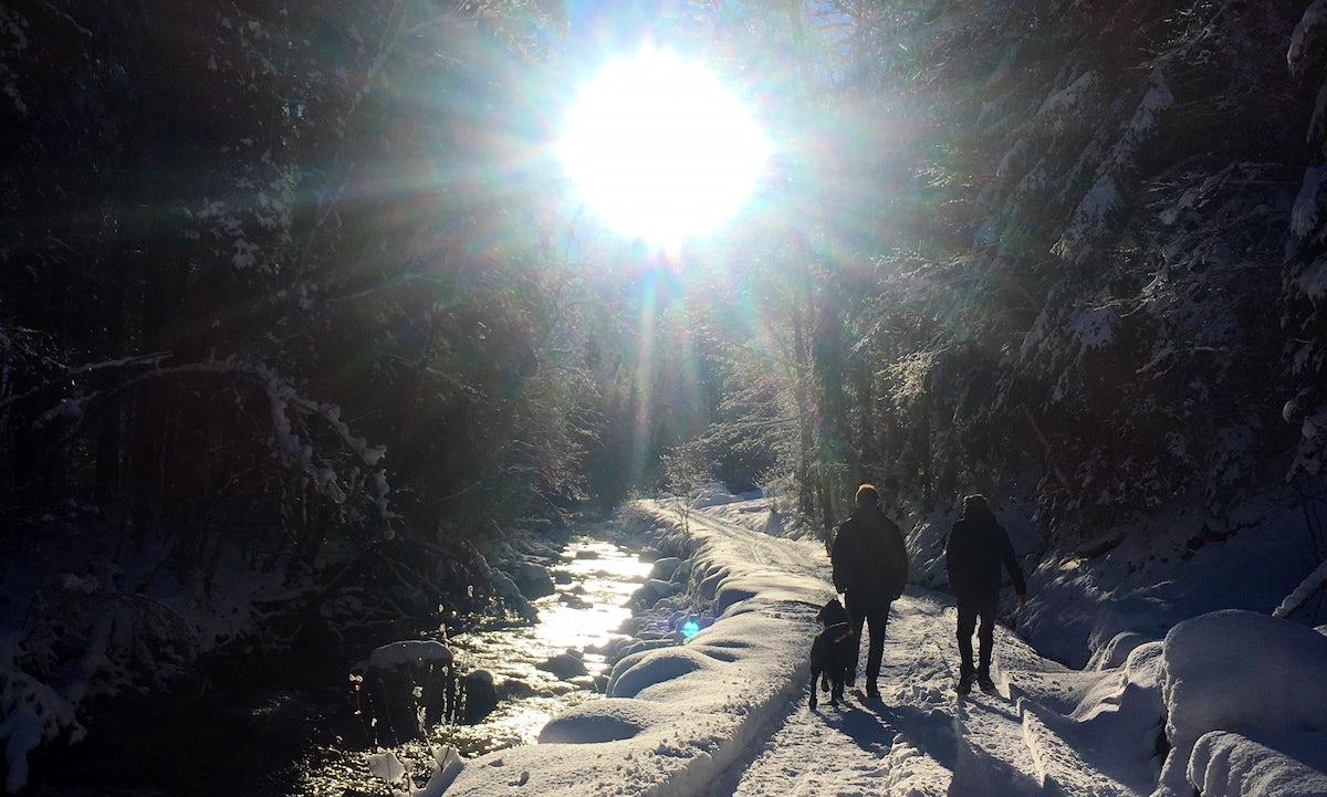 Walks around Morzine - Fox's path & Nyon's Waterfall