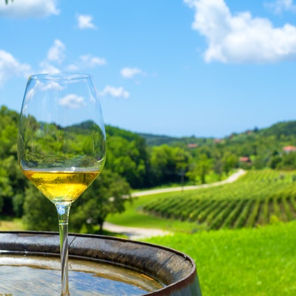 Dalmatian wines: nothing is complete without a glass of wine
