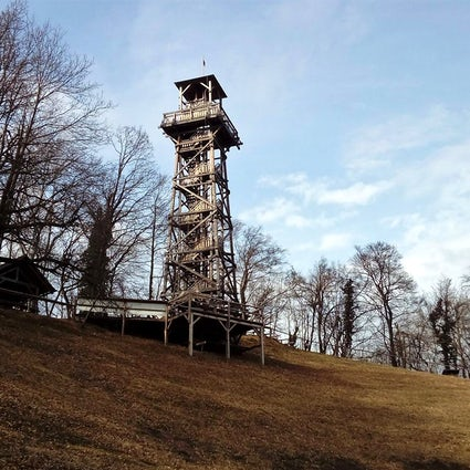 Slovenian Stolp ljubezni: A tower where love grows