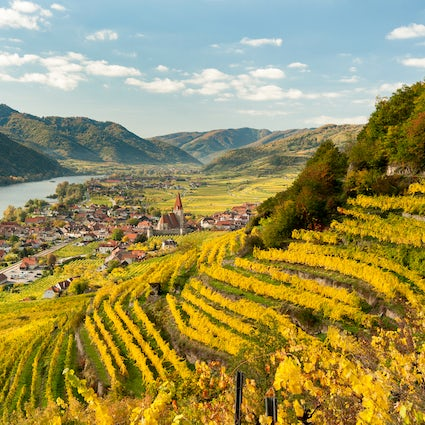 Wachau – the valley where nature meets history