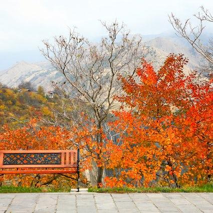 Tsaghkadzor - a spa & resort town for all seasons